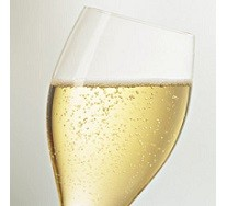 coupe-champagne